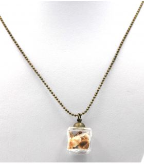 Square pendant with seashells